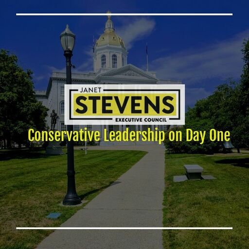 Janet Stevens for New Hampshire Executive Council: General Donations