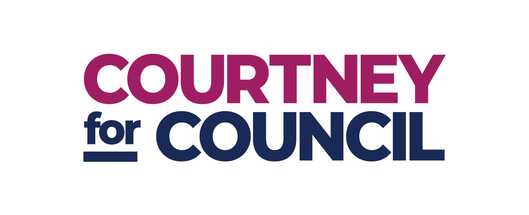 Courtney Johnston for Council: General Fund