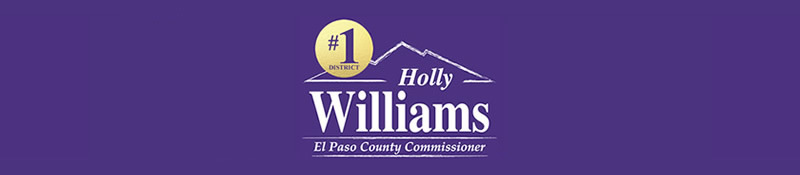 Committee to Elect Holly Williams: General Fund
