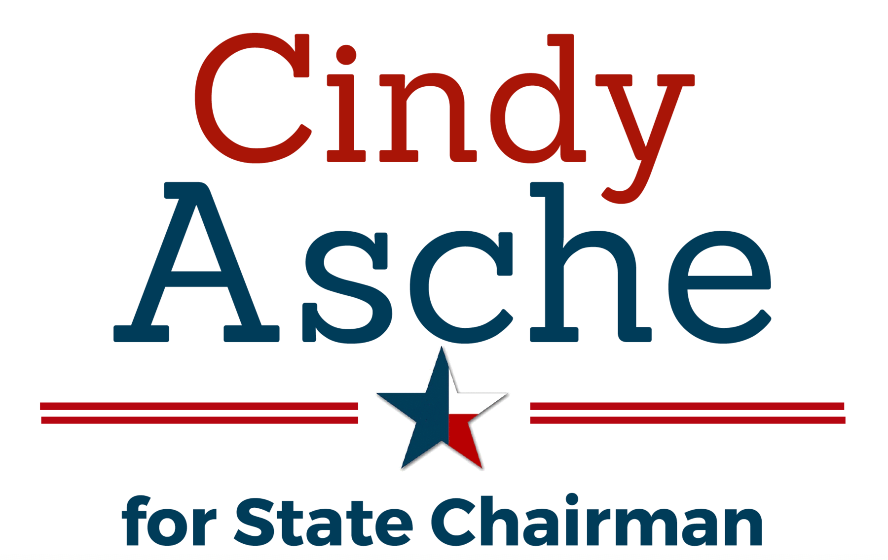 Cindy Asche for State Chairman: Cindy Asche for Chairman